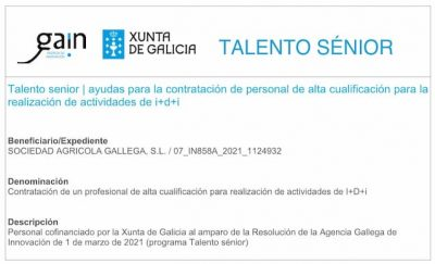 talento senior xunta galicia